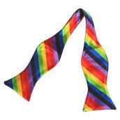 Oknuten fluga rainbow