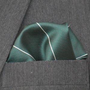 Bröstnäsduk N501